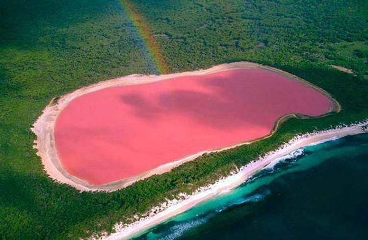 Pink Lake Hillier, Australia
