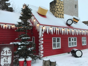 The Christmas Garden